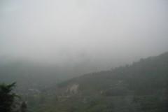 shaolin-si-foresta-di-pagode